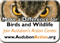 Join the Audubon Action Center