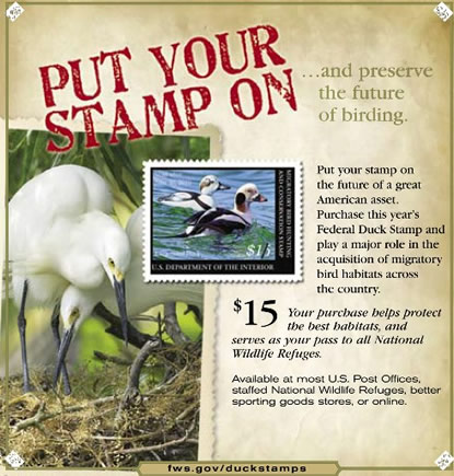 Duck Stamp Program